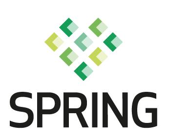 Cluster Spring